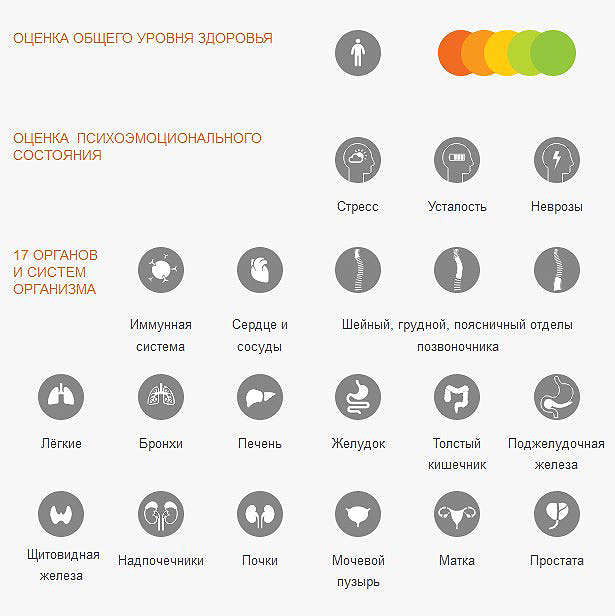 Rofes, что тестирует visionmarkrt24.ru